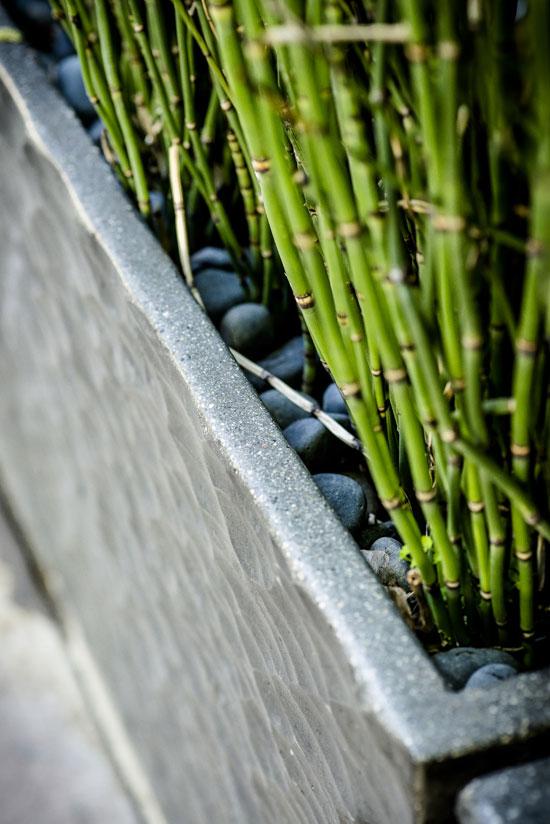 concrete-pot-vancouver-bc